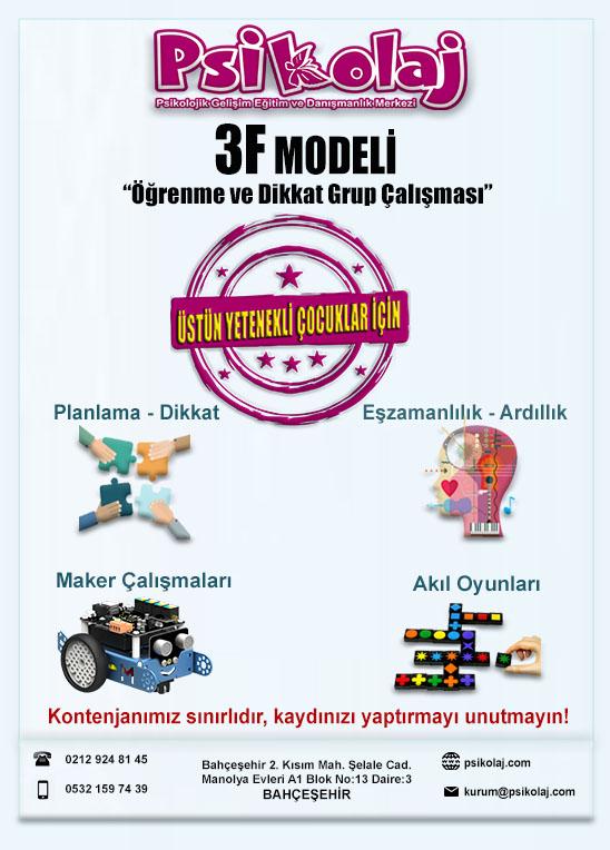 3F Modeli – Öğrenme ve Dikkat Çalışması (Üstün Yetenekliler İçin)