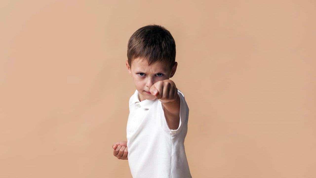 Çocuk ve Ergenlerde Yıkıcı Davranışlar